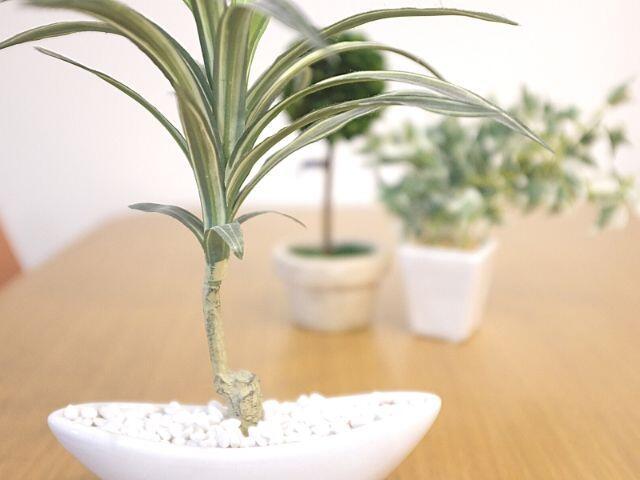 人工観葉植物でもリアルなものが増えている